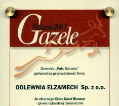 Gazele Biznesu 2003